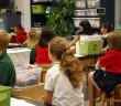 copii scoala publica sau privata