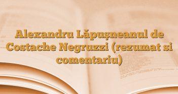 Alexandru Lăpuşneanul de Costache Negruzzi (rezumat si comentariu)