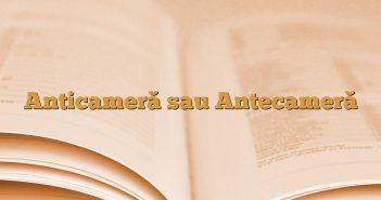 Anticameră sau Antecameră