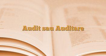 Audit sau Auditare
