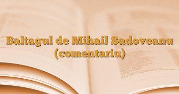 Baltagul de Mihail Sadoveanu (comentariu)
