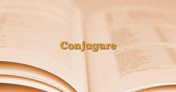 Conjugare