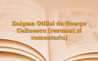 Enigma Otiliei de George Calinescu (rezumat si comentariu)