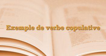 Exemple de verbe copulative