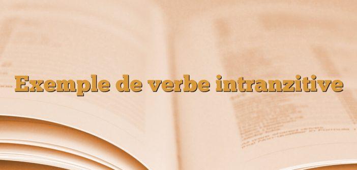 Exemple de verbe intranzitive