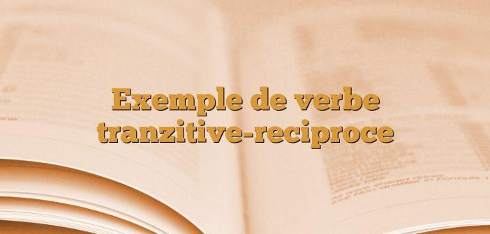 Exemple de verbe tranzitive-reciproce
