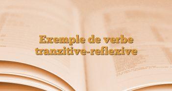 Exemple de verbe tranzitive-reflexive