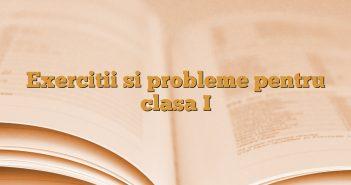 Exercitii si probleme pentru clasa I