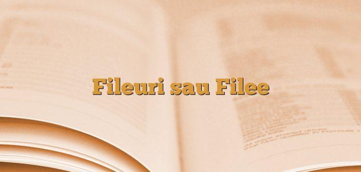 Fileuri sau Filee