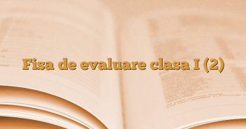 Fisa de evaluare clasa I (2)