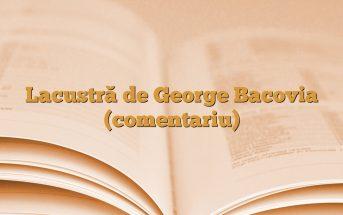 Lacustră de George Bacovia (comentariu)