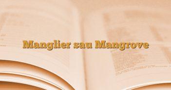 Manglier sau Mangrove