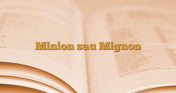 Minion sau Mignon