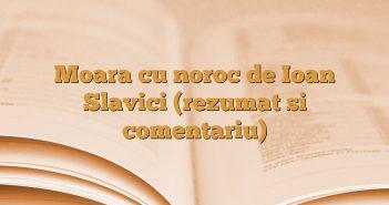 Moara cu noroc de Ioan Slavici (rezumat si comentariu)