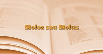 Moloz sau Moluz