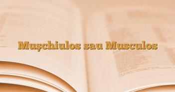 Muşchiulos sau Musculos