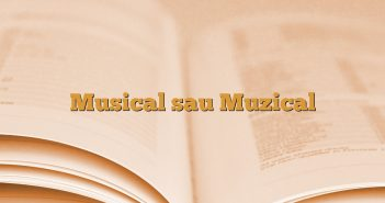 Musical sau Muzical