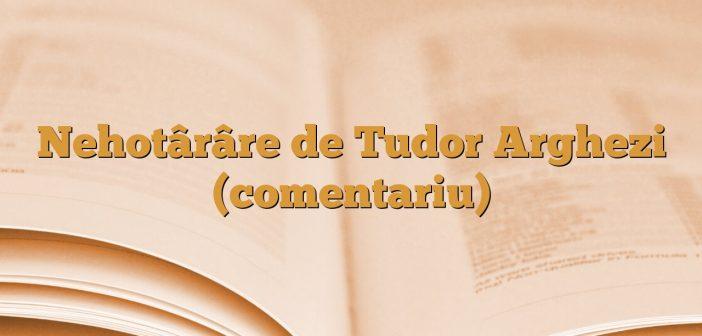 Nehotârâre de Tudor Arghezi (comentariu)