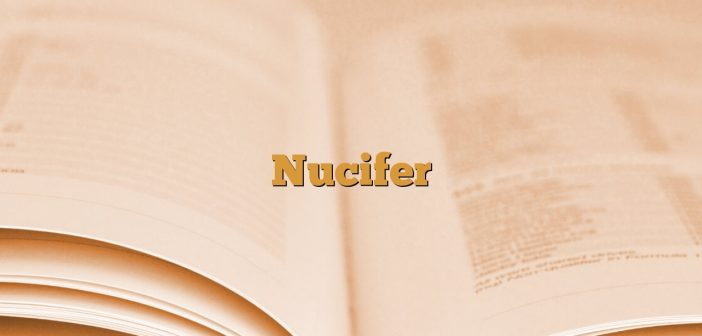 Nucifer