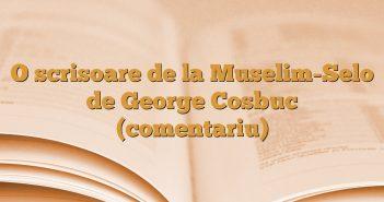 O scrisoare de la Muselim-Selo de George Cosbuc (comentariu)