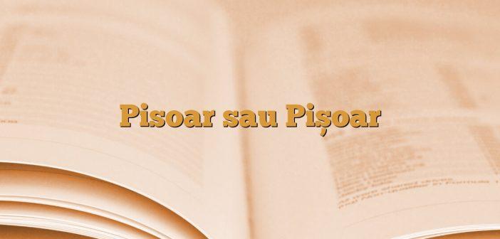 Pisoar sau Pișoar
