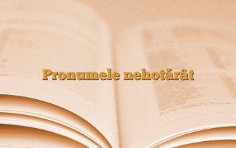 Pronumele nehotărât