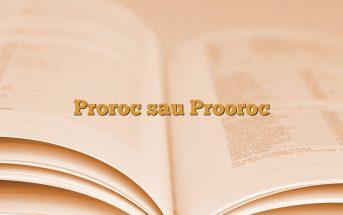 Proroc sau Prooroc