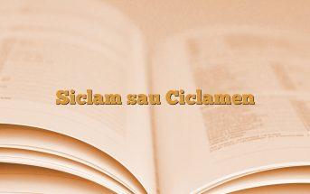 Siclam sau Ciclamen