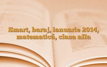 Smart, baraj, ianuarie 2014, matematică, clasa aIIa