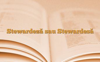 Stewardeză sau Stewardesă