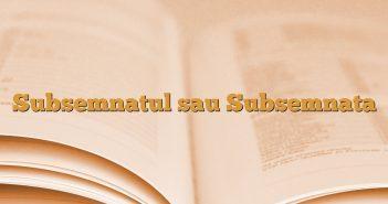 Subsemnatul sau Subsemnata
