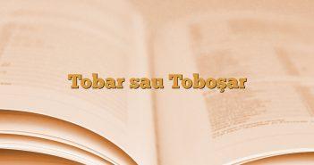 Tobar sau Toboşar