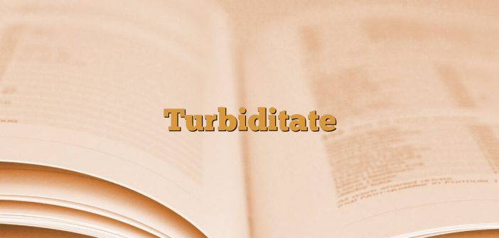 Turbiditate