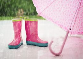 Citate despre ploaie