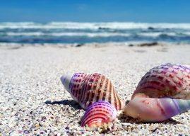 Jocuri creative în nisip pentru vacanța de vară