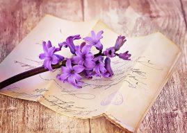 Citate și cugetări frumoase despre limba română