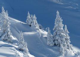 Citate și cugetări deosebite despre iarnă