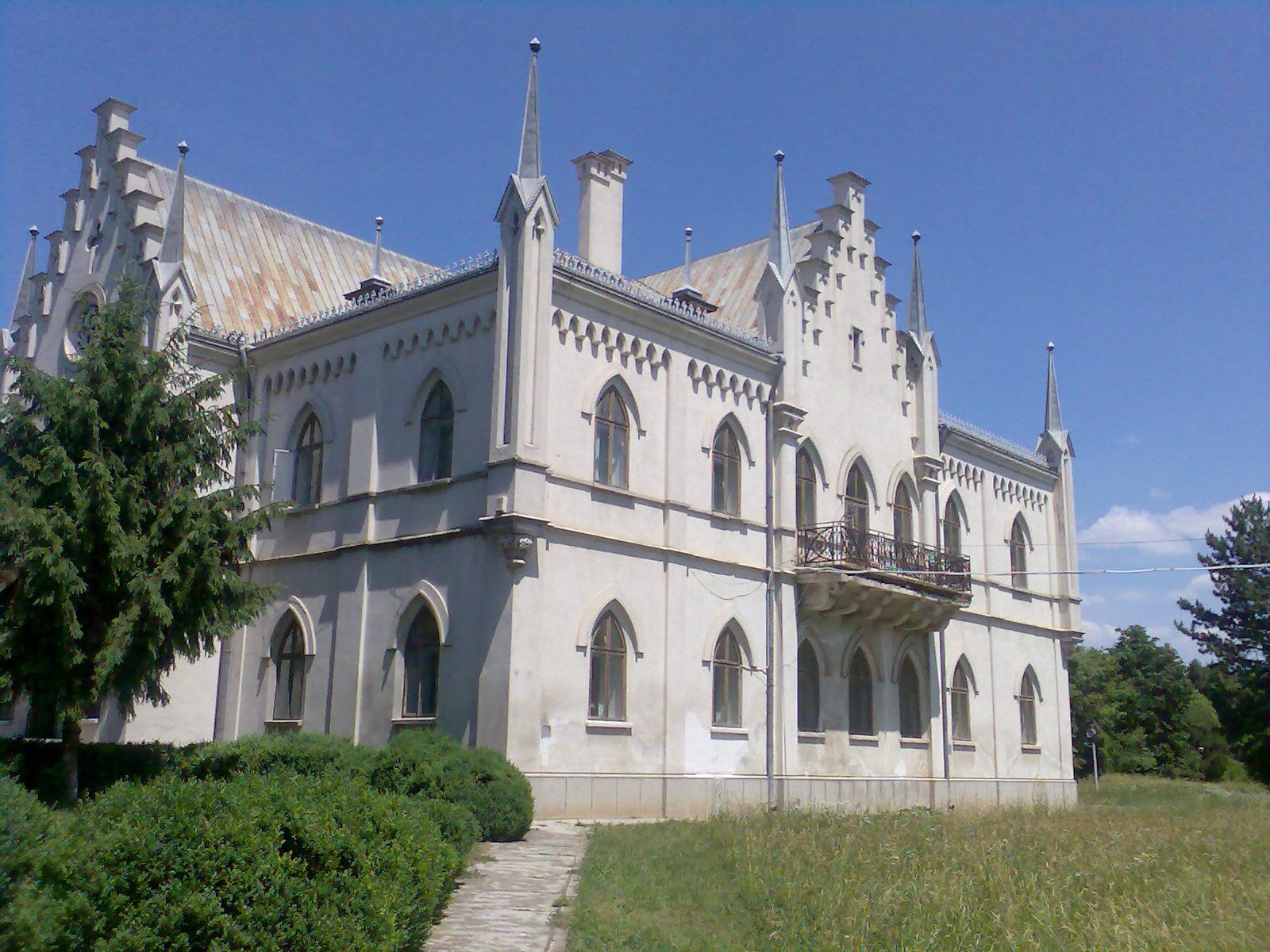 Palatul_de_la_Ruginoasa1.jpg