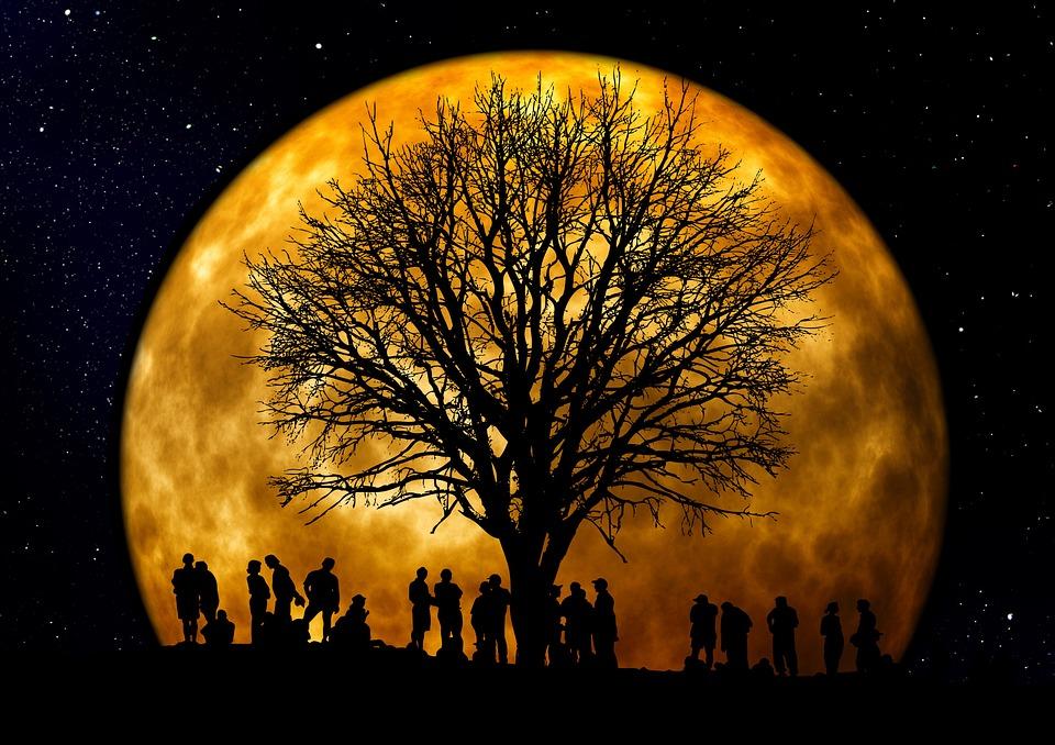 citate despre luna Citate despre lună | AniDeȘcoală.ro citate despre luna